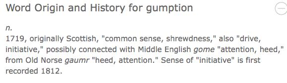 definition of gumption (small 'g')