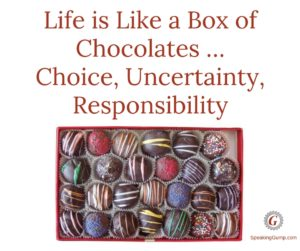 Life is Like a Box of Chocolates... You have a choice, it is uncertainty, take responsibility for it all